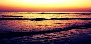 Mustalle merelle